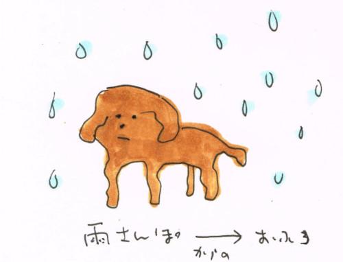 雨の散歩とお風呂